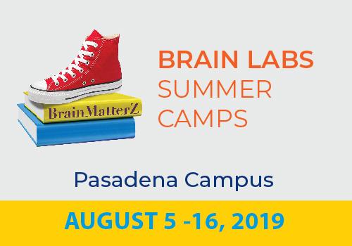 Brain Labs PD